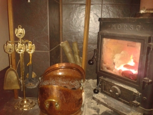 The coal hod, companion set and stove