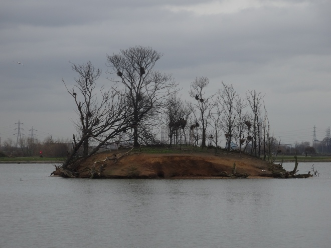 The Island in the Water Reservoire